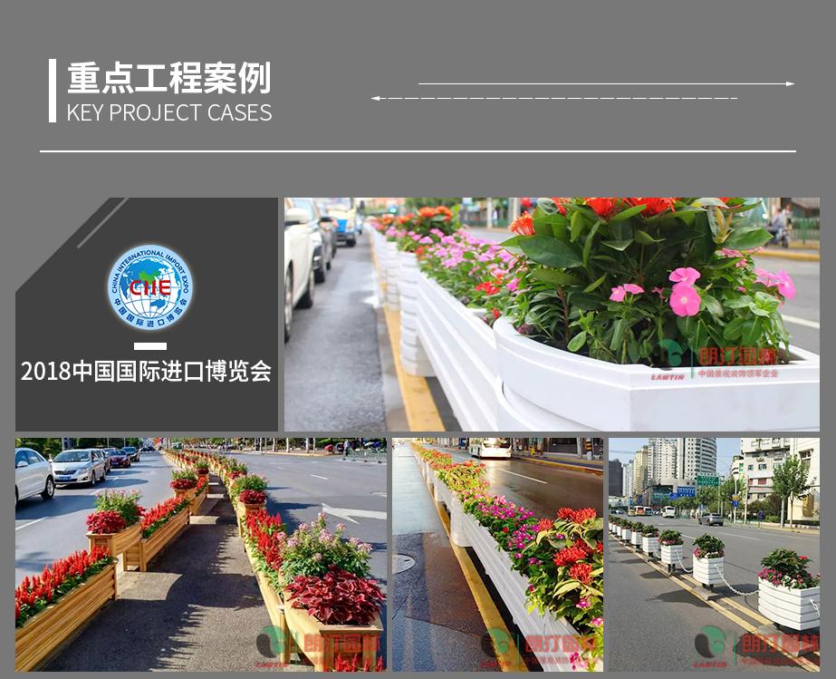 1 上海进博会道路綠化案例