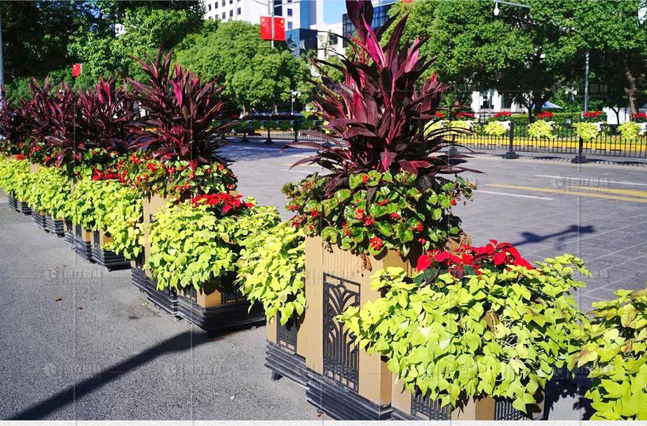 上海市政府門口道路綠化使用朗汀園林花箱