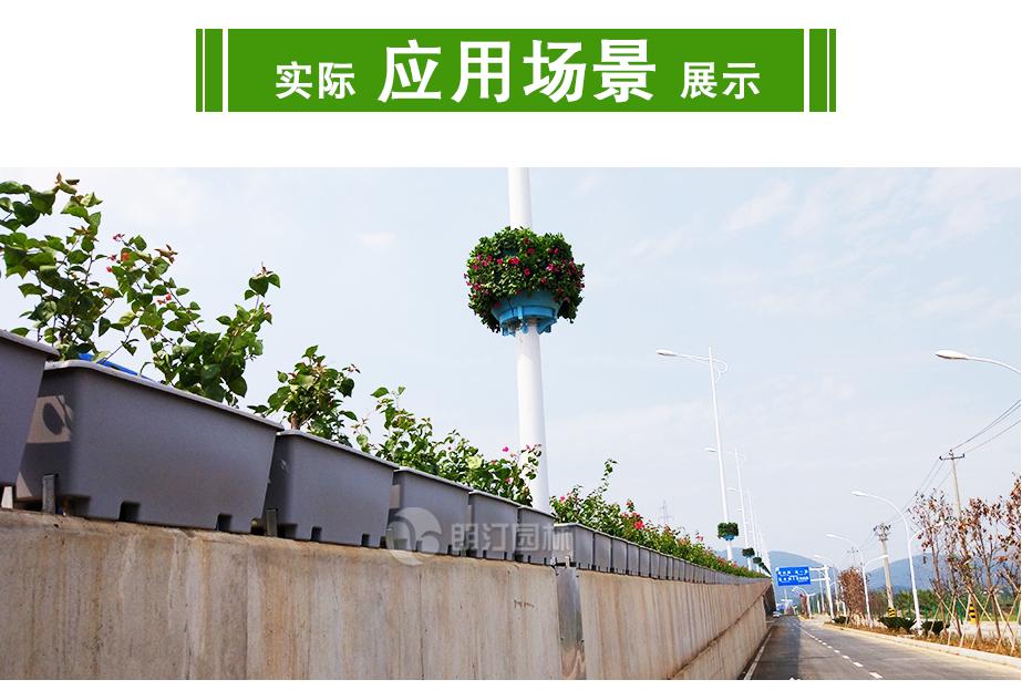 高架桥人行天桥绿化花盆案例图