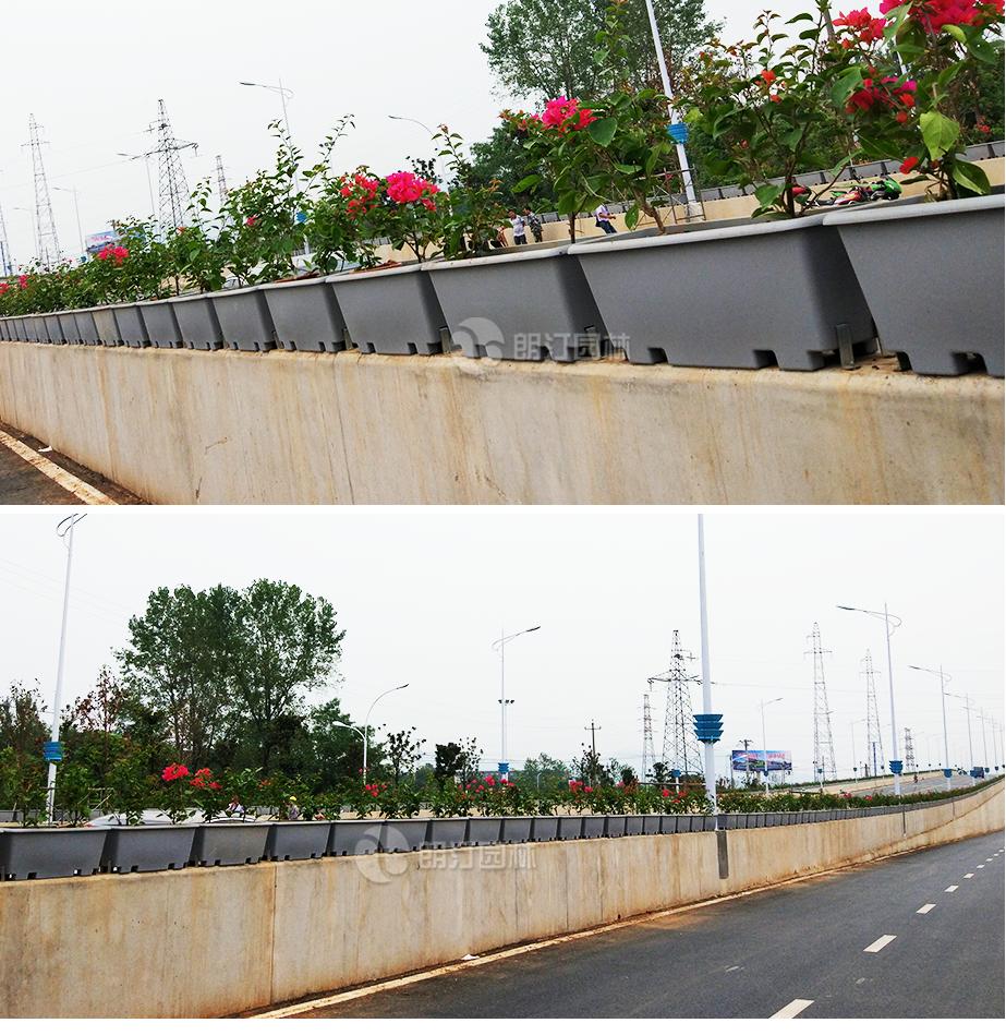 高架桥人行天桥绿化花盆实景图
