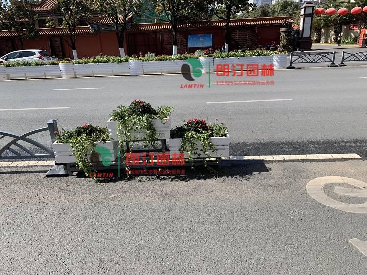 朗汀城市生态空间装饰案例-云南昆明道路隔离绿化工程