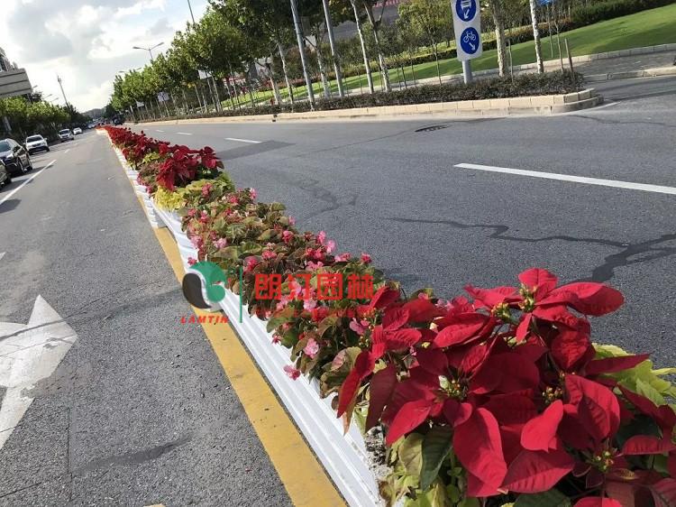 朗汀生态空间装饰工程-进博会场馆周边道路景观改造提升