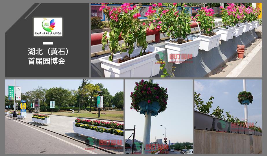 4 湖北园博会立体绿化工程案 例