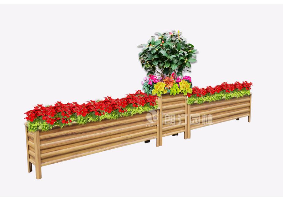 朗汀园林植物搭配方案