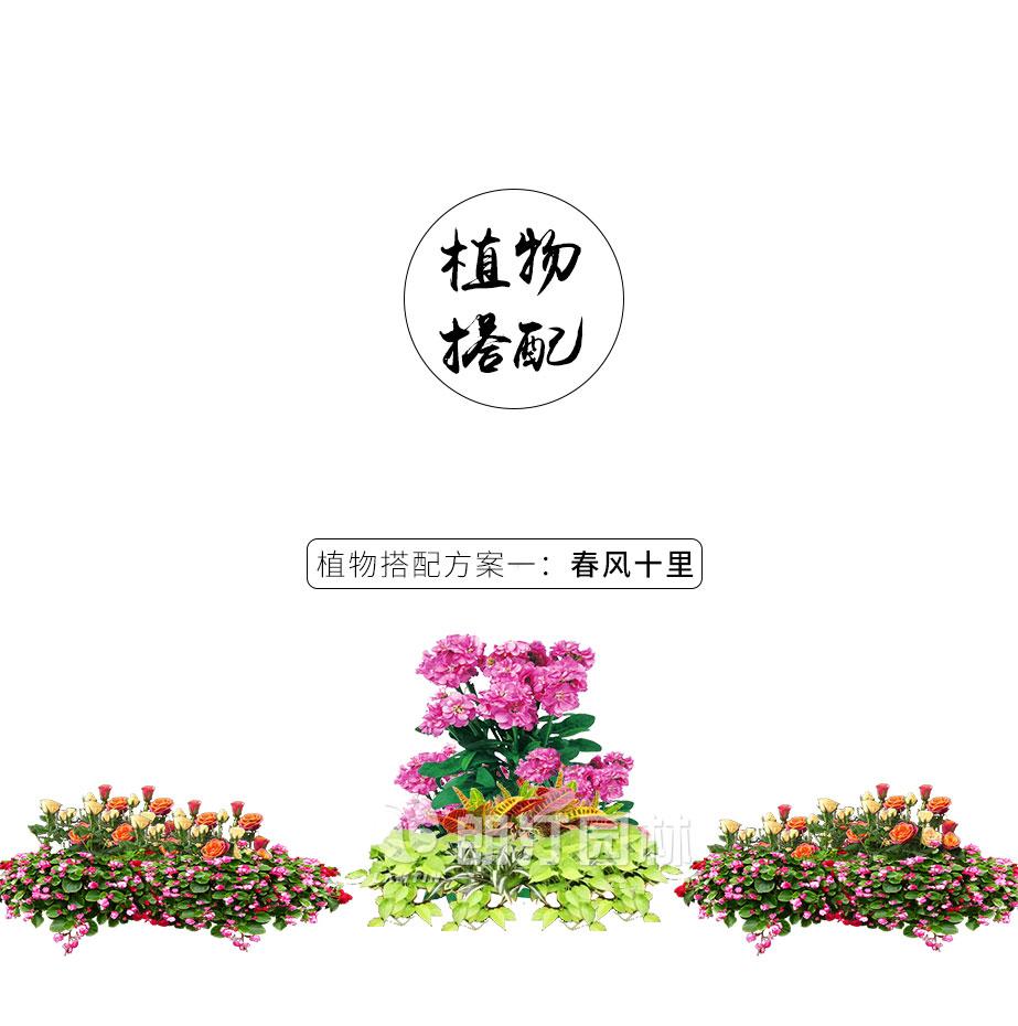 朗汀19款新品花箱植物搭配
