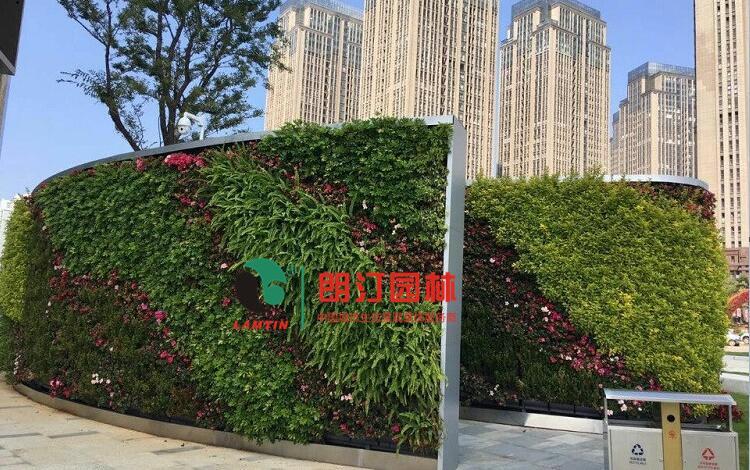 云南植物墙案例图