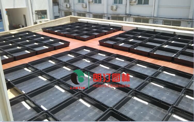 上海办公楼屋顶绿化工程案例