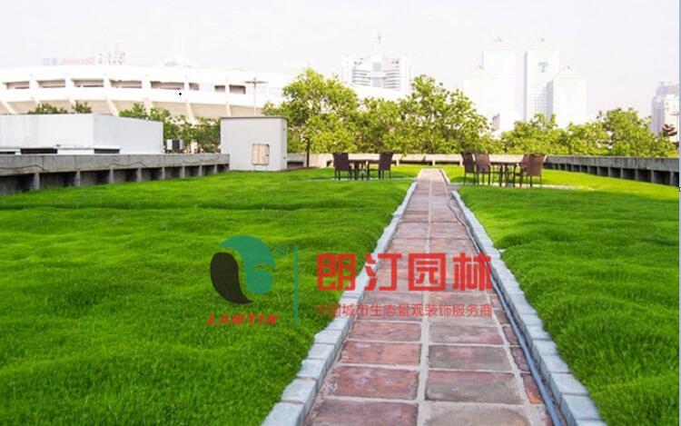 商场屋顶绿化案例|