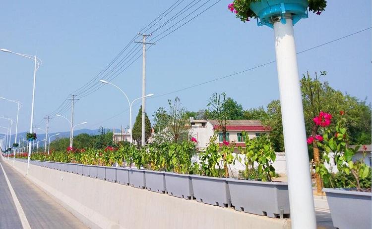 湖北高架桥立体绿化案例