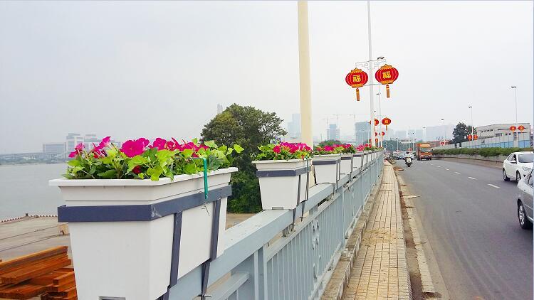 福建福州桥梁护栏绿化工程案例