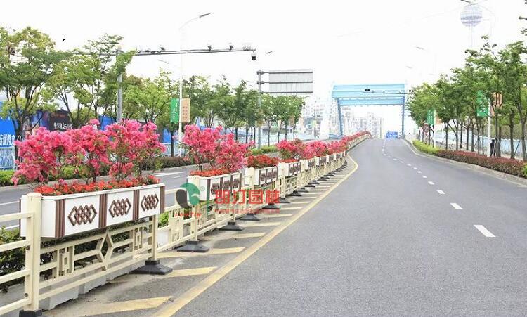 护栏花箱景观案例