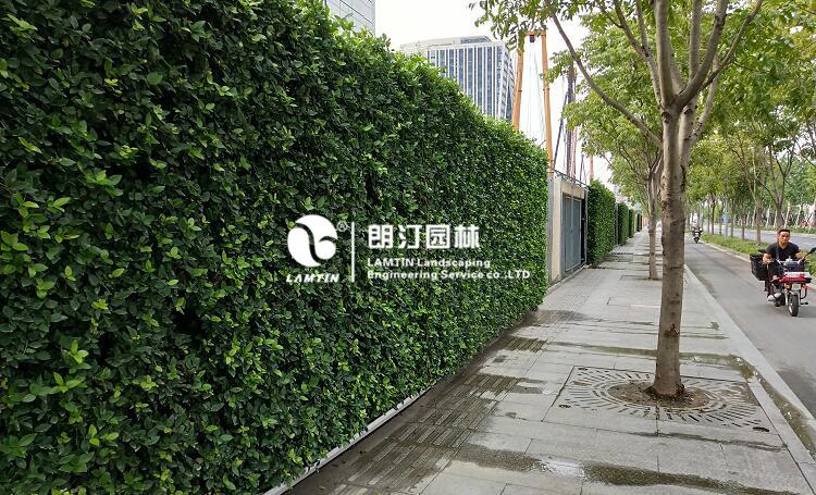 朗汀园林5012植物墙花盆