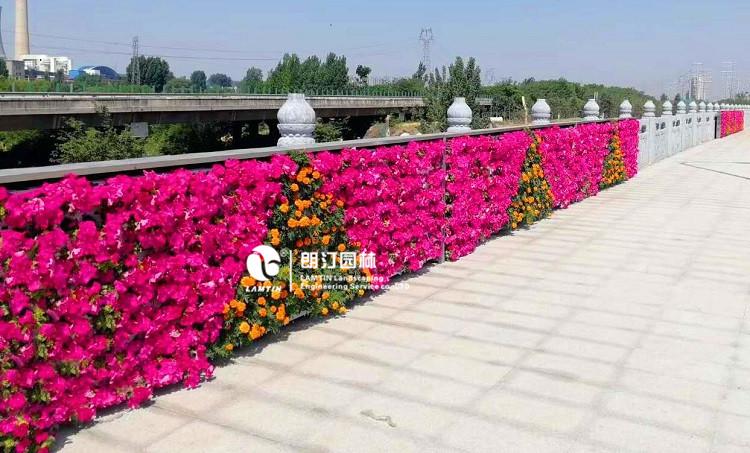 河南平顶山植物墙绿化景观工程案例